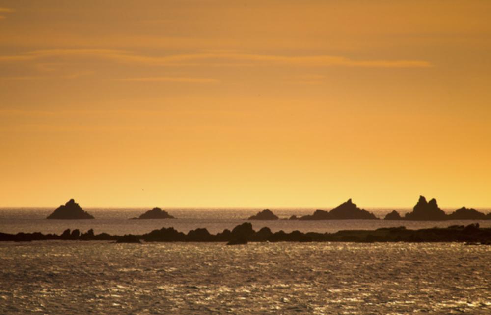 Owhiro Bay Sunset