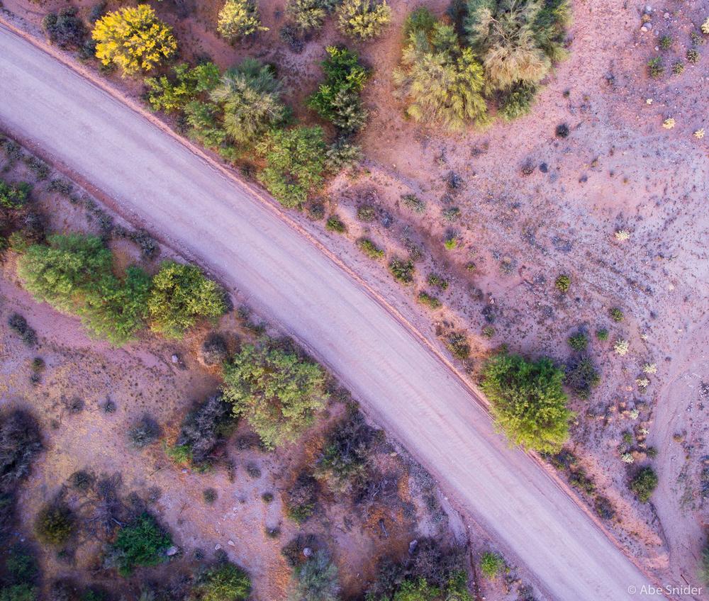 Mojave Dirt Road