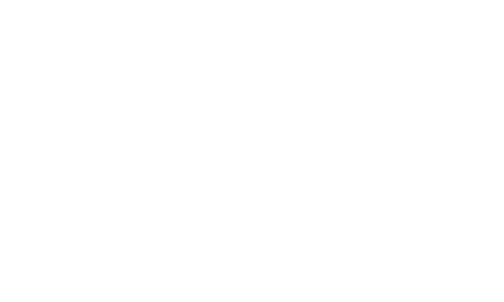 Delaware College Scholars Program
