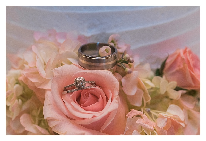 Picture-This-Photography-Charlotte-NC-Cleveland-OH-Wedding-Real-Estate-Photographer_1512.jpg