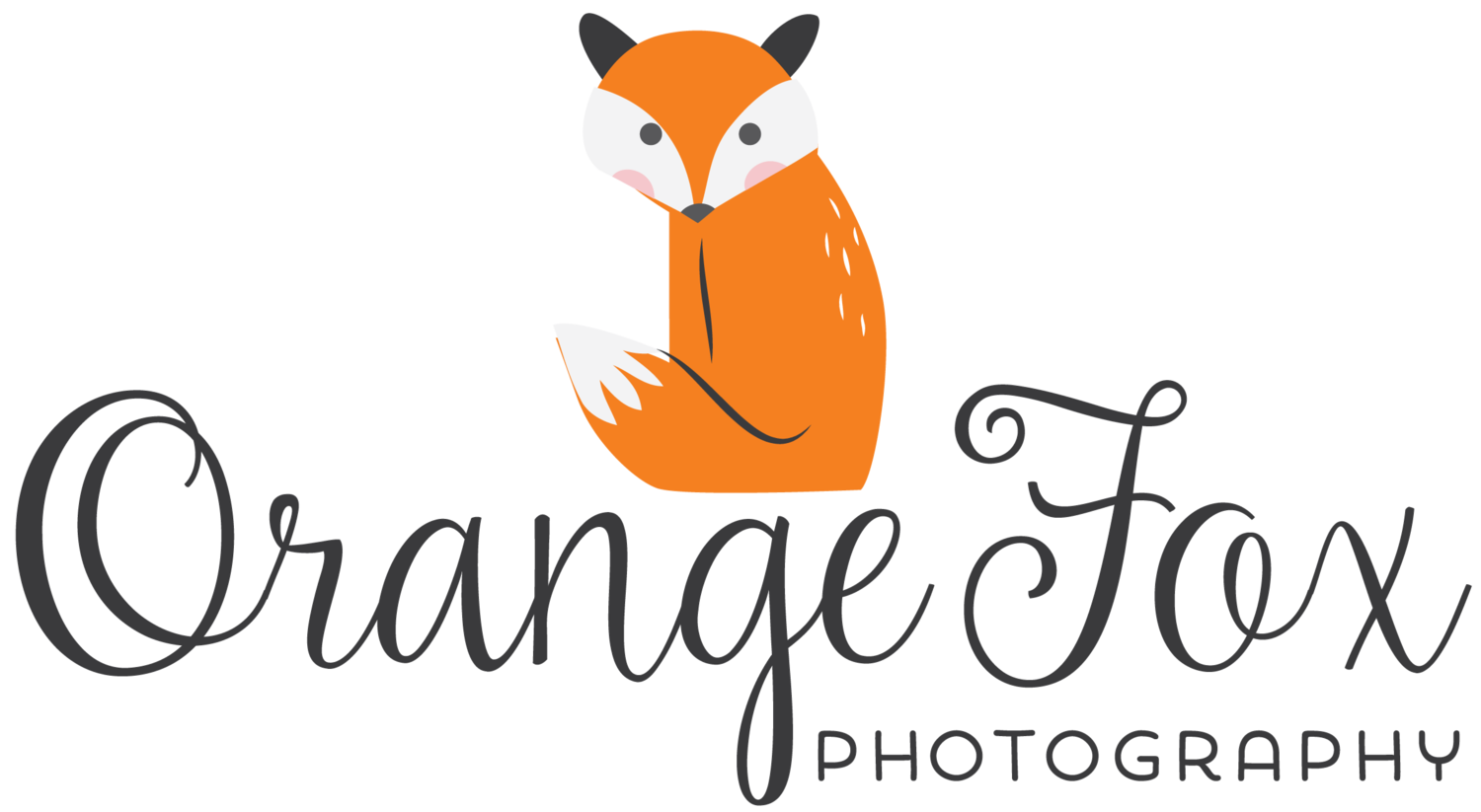 Orange Fox Photography