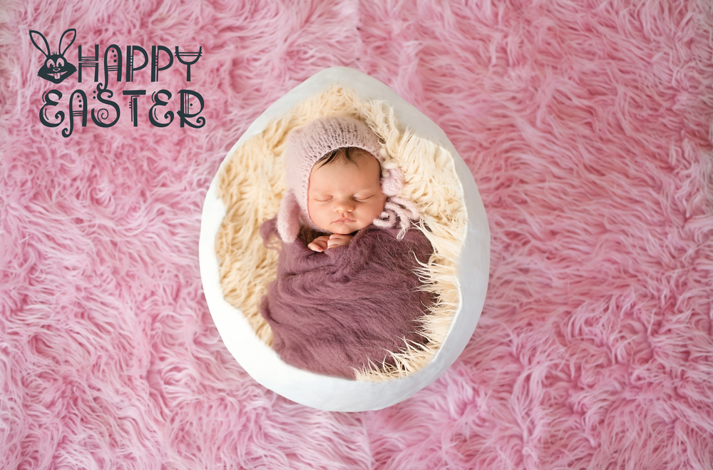 newborn photographer exeter egg baby