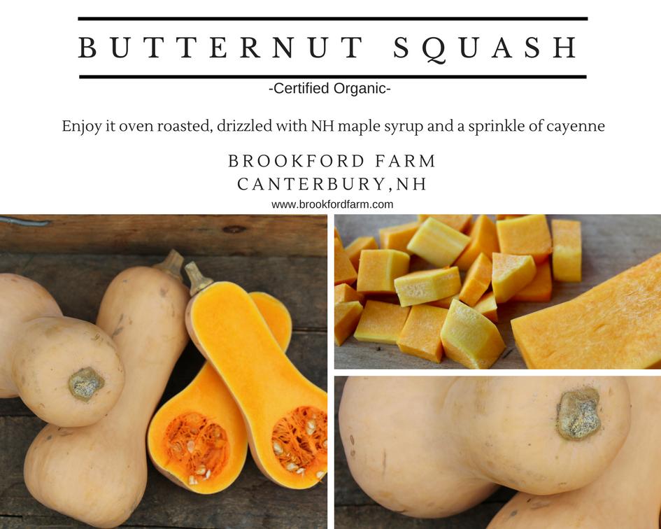 Butternut squash.png