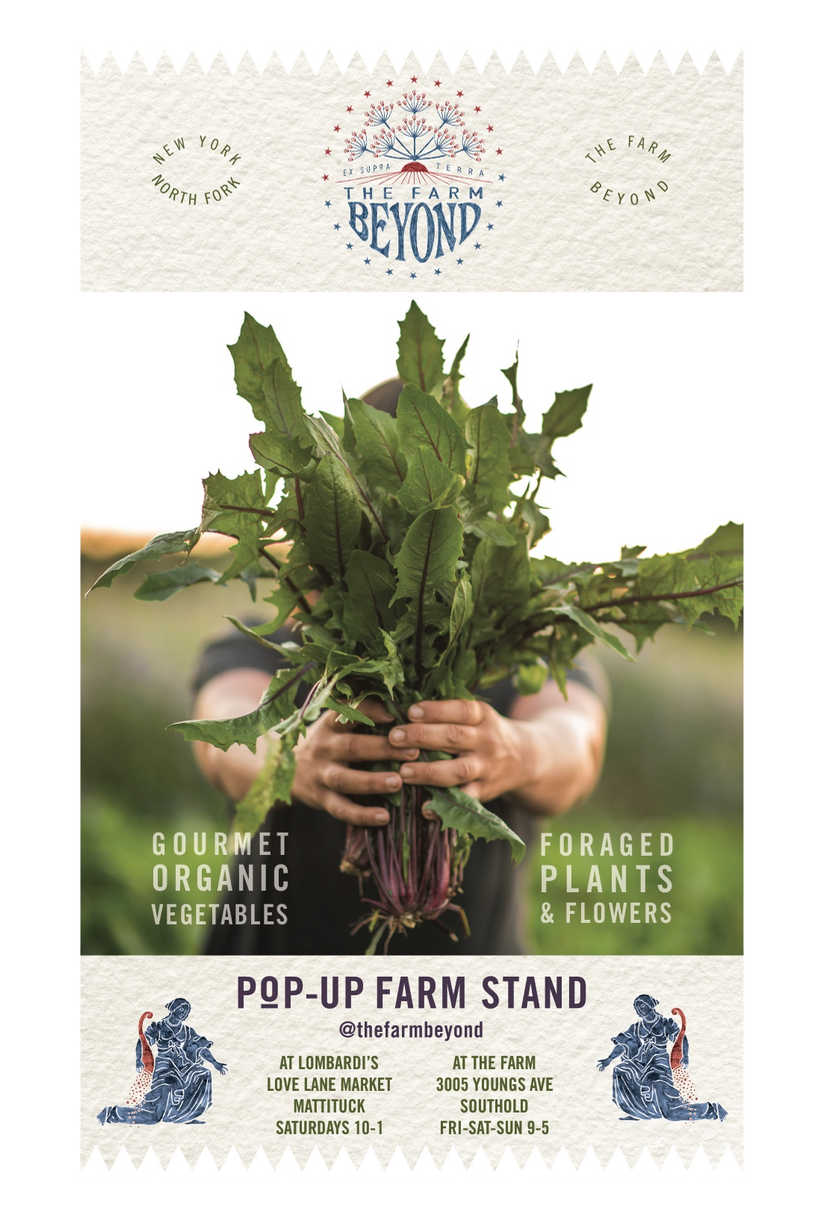 TFB17_Pop-Upweb.jpg