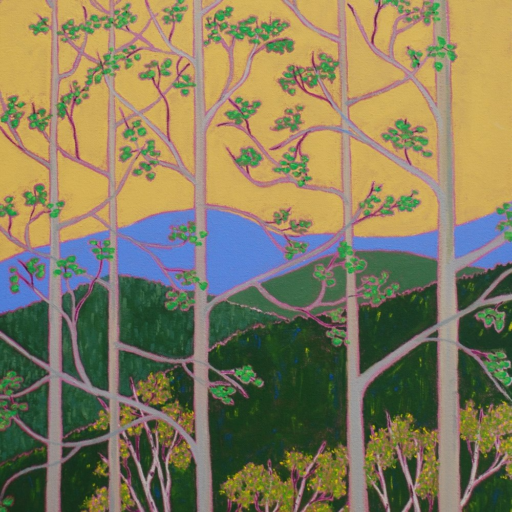 Marcia Crumley_Spring Overlook_36in x 28in acrylic on canvas_August 2017_web.jpg