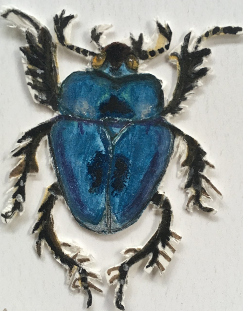 blue bug cut out.jpg
