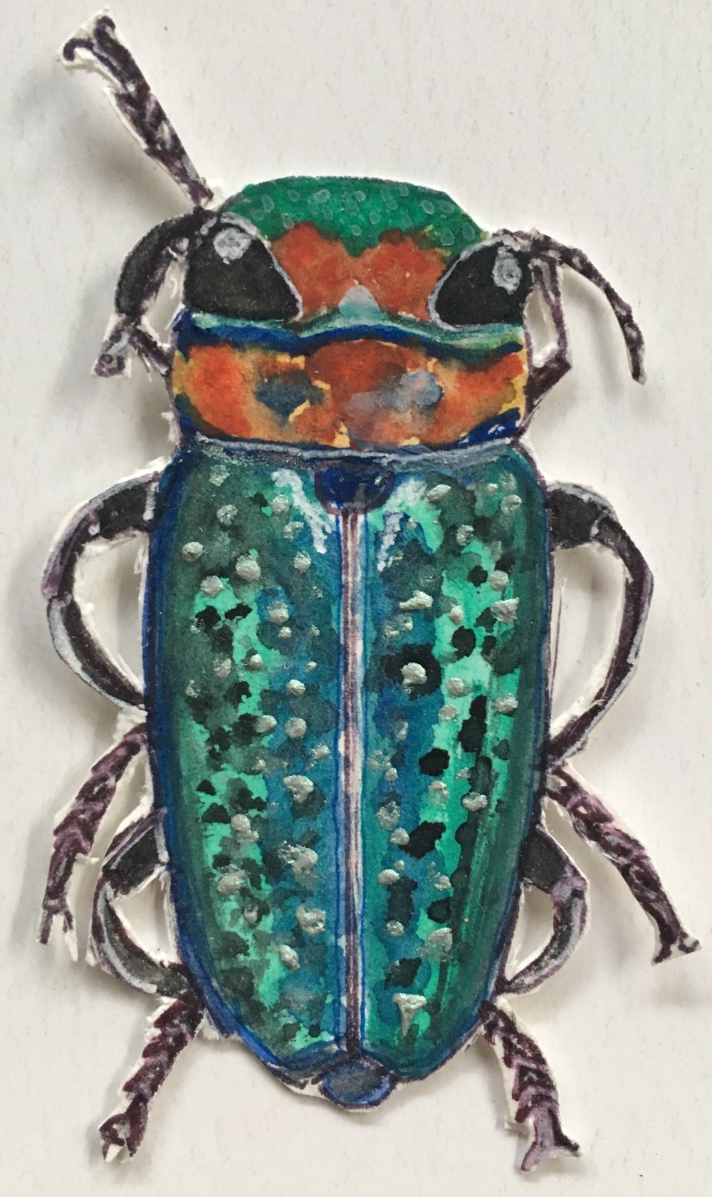 coulorful spotted bug cut out.jpg
