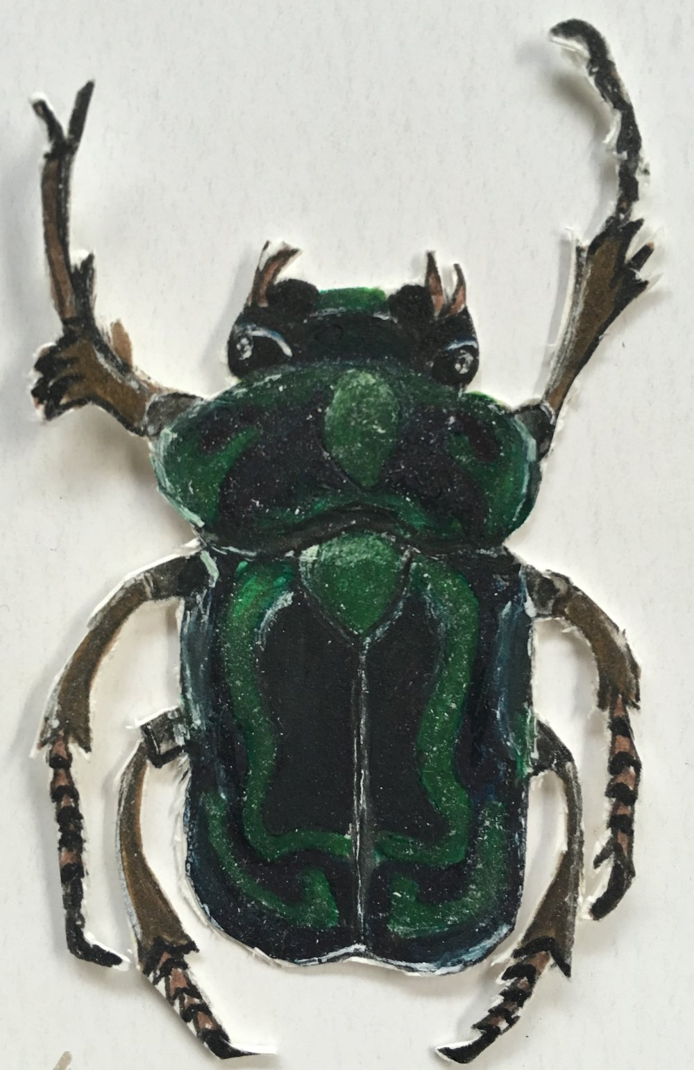 green bug cut out w brown legs.jpg