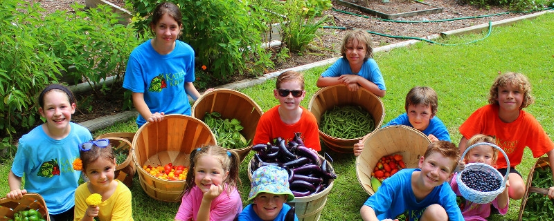 The mission of Katie's Krops is to empower youth to start and maintain vegetable gardens of all sizes and donate the harvest to help feed people in need, as well as to assist and inspire others to do the same.