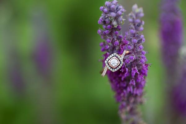Angela+Mike Wedding+Engagement-8.jpg