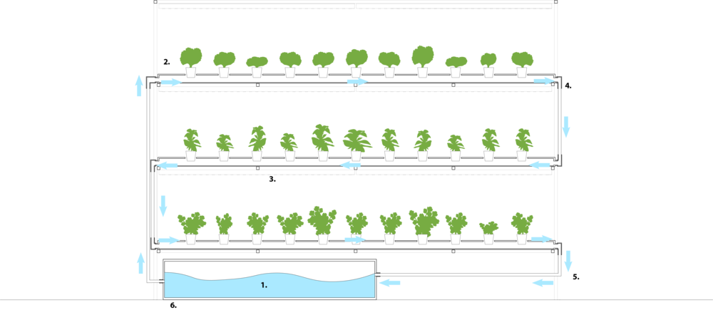 HYDROPHONIC SYSTEM DIAGRAM 2.png