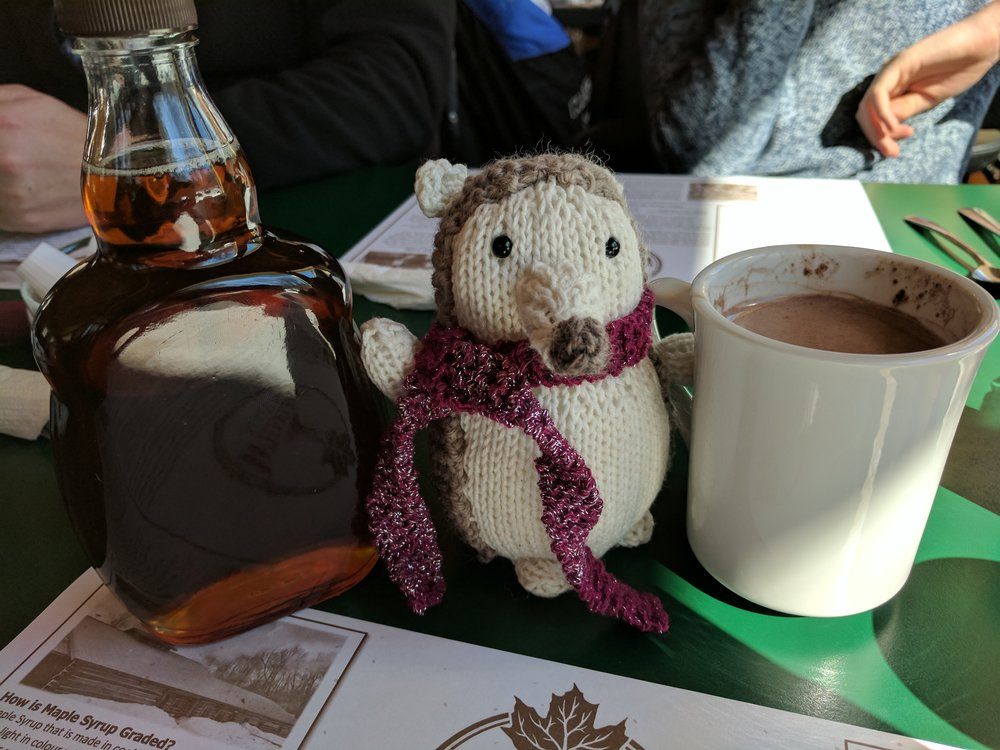 Here he (she?) is at Wheeler's Pancake House, a delightful learning and eating experience for all things maple should you ever find yourself in Lanark County, Ontario.