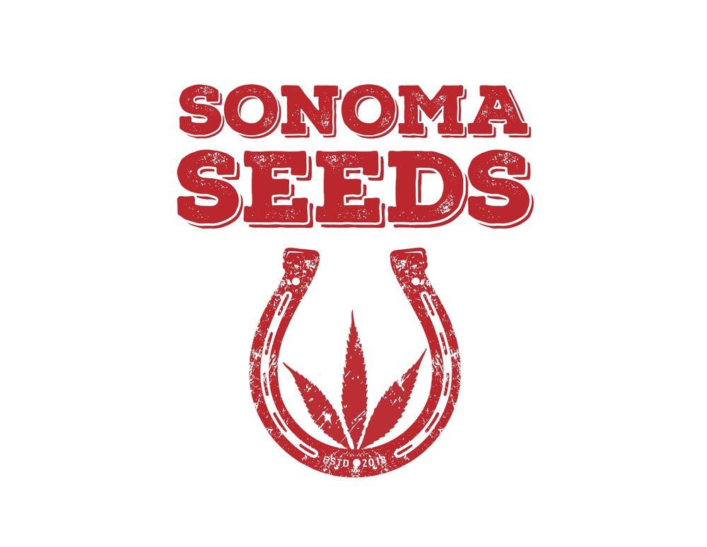(SS)-Cannabis-Now-Ad---600x300---2.0---ck.jpg