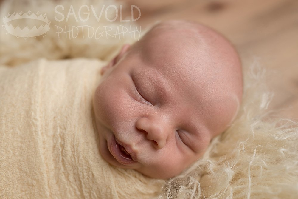 Newborn picture Fargo ND newborn photographer Janna Sagvold Photography