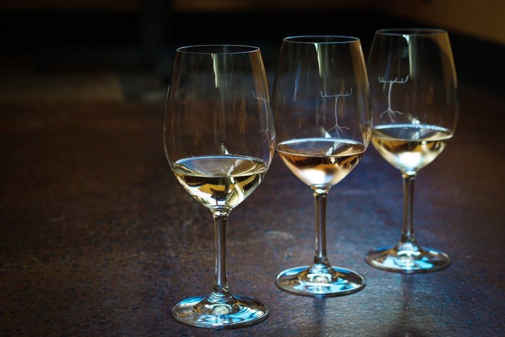 Wine Tasting Stock.jpg