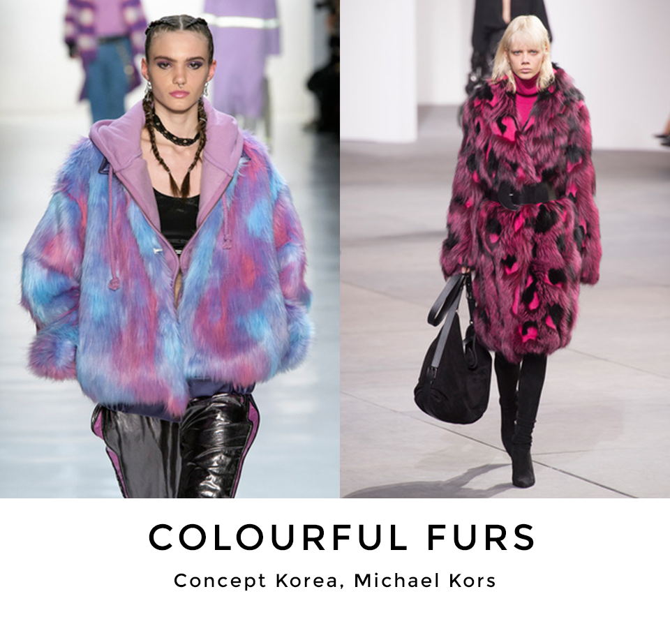 COLOURFUL FURS.png