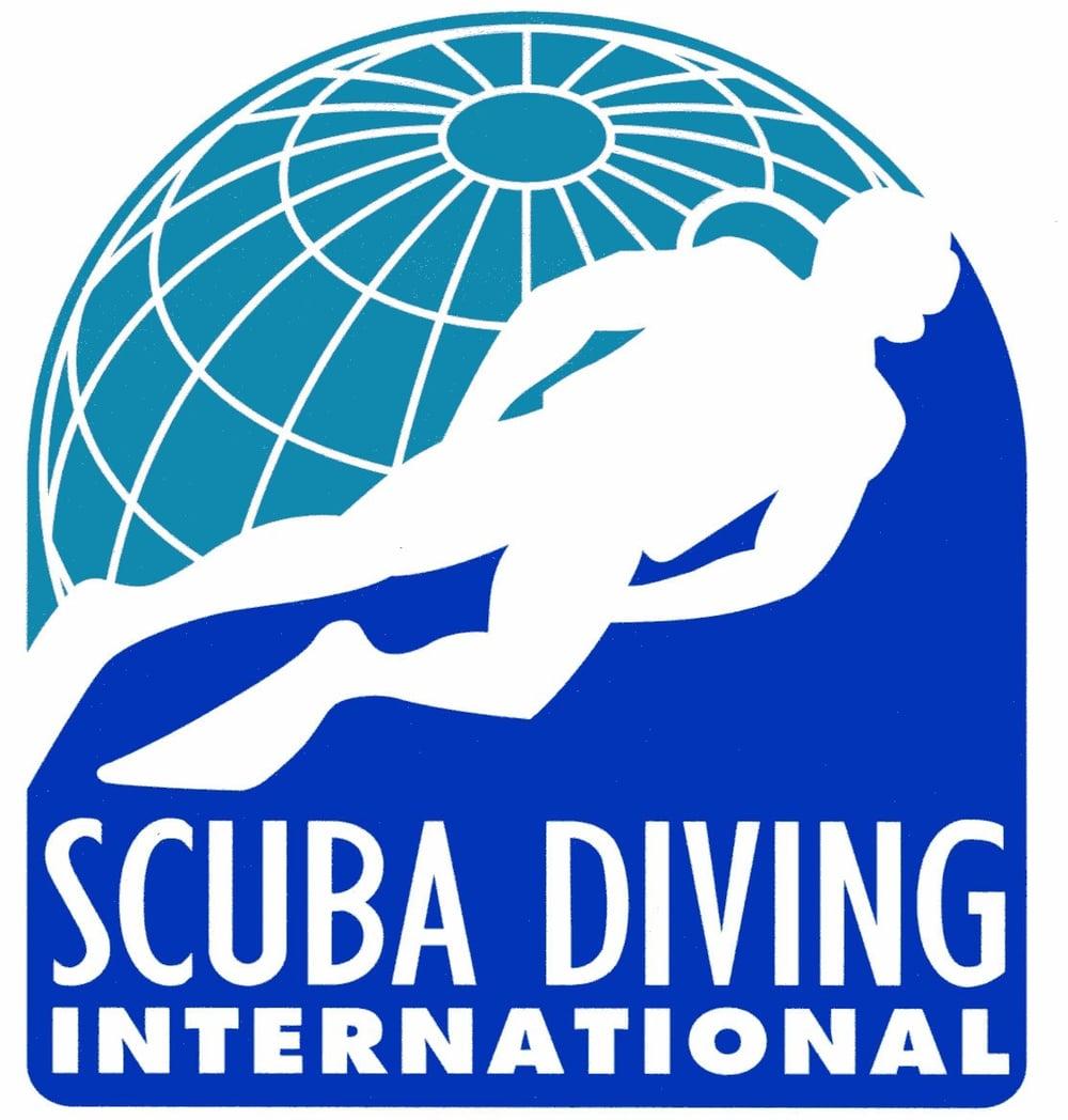 SDI-Logo.jpg