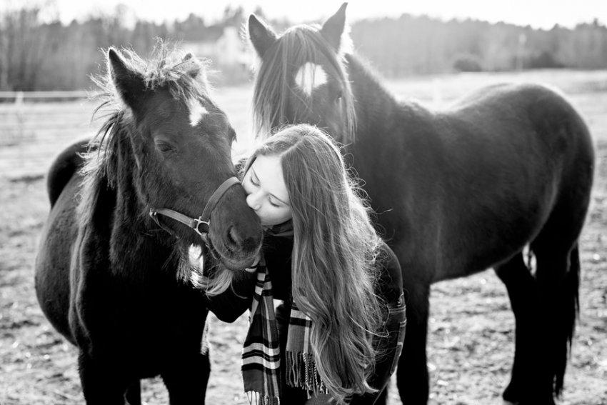 saratoga-springs-ny-equine-photography50.jpg