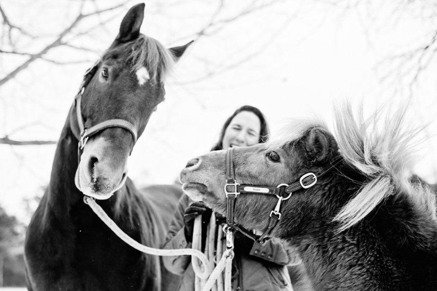 Horse-Photography-Saratoga-Springs-NY03.jpg