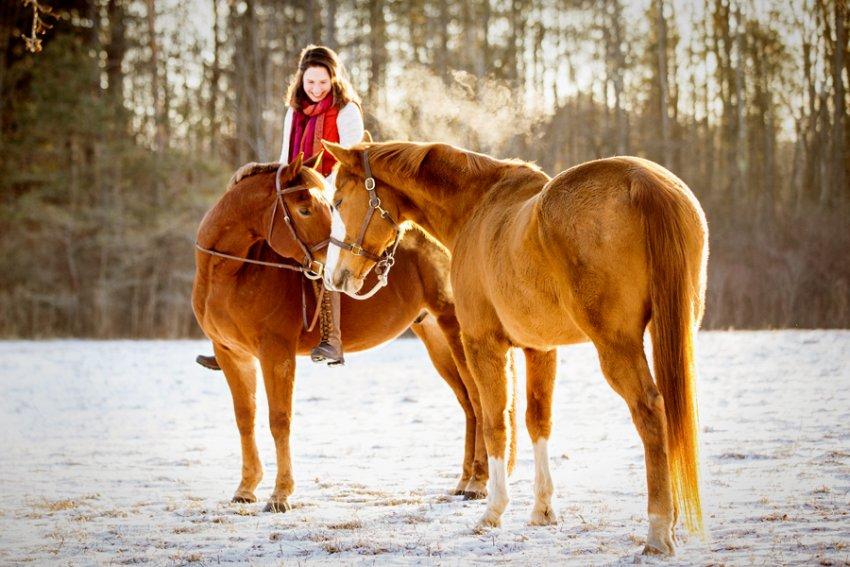 Horse-Photography-Saratoga-Springs-NY09.jpg