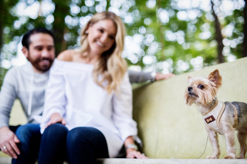 saratoga-ny-engagement-photography-with-dog06.jpg