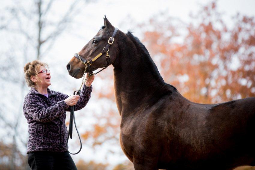 Saratoga-Equine-Photographer19.jpg