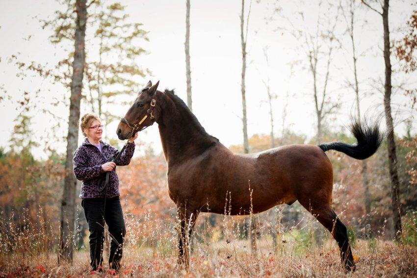 Saratoga-Equine-Photographer26.jpg