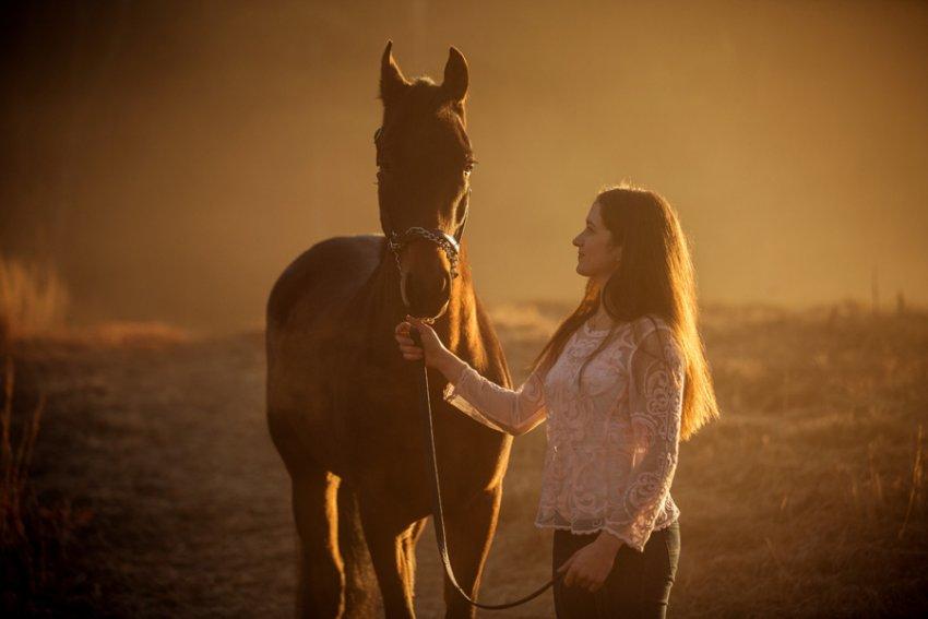 Equine-photographer-saratoga-ny20.jpg