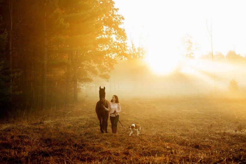 Equine-photographer-saratoga-ny21.jpg