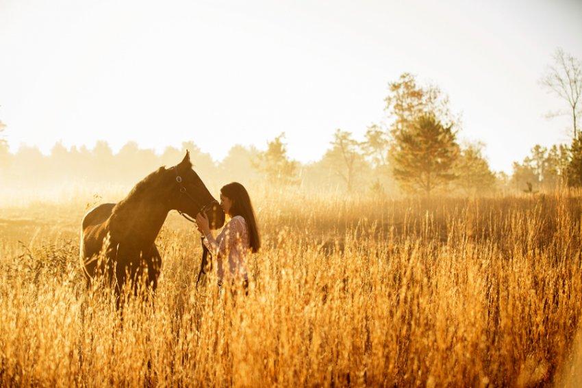 Equine-photographer-saratoga-ny22.jpg
