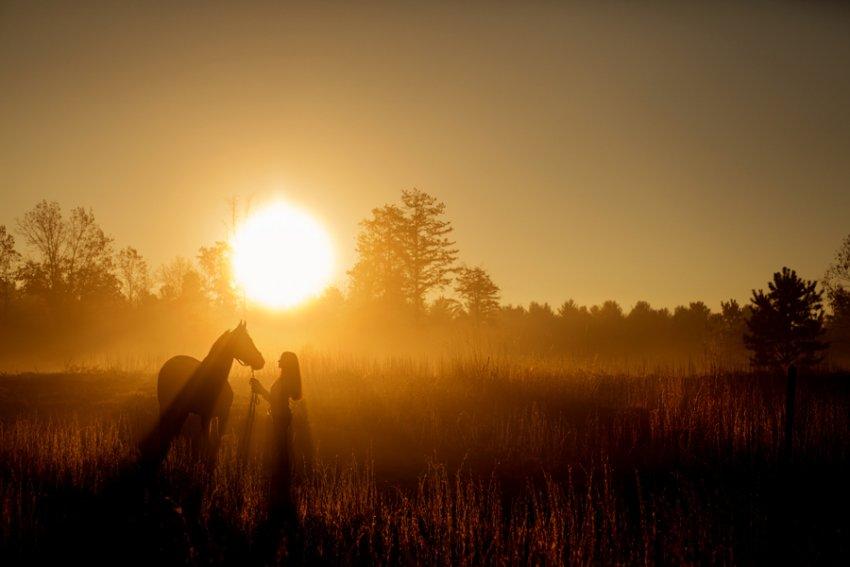 Equine-photographer-saratoga-ny25.jpg