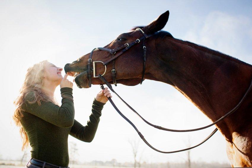 Equine-photographer-saratoga-ny02.jpg