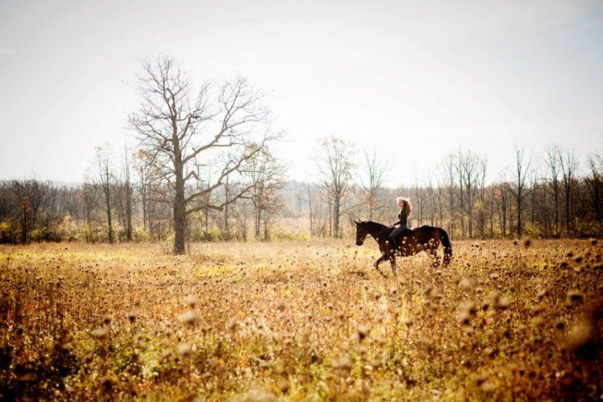 Equine-photographer-saratoga-ny07.jpg