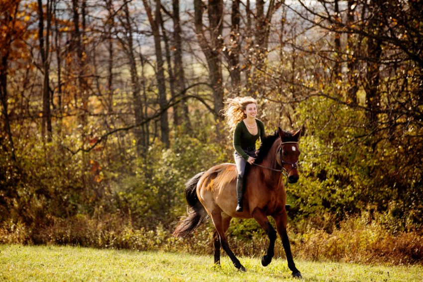 Equine-photographer-saratoga-ny10.jpg