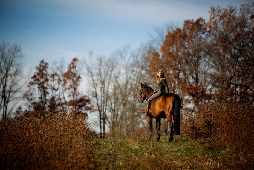 Equine-photographer-saratoga-ny11.jpg