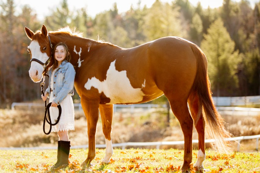Equine-photographer-saratoga-ny33.jpg