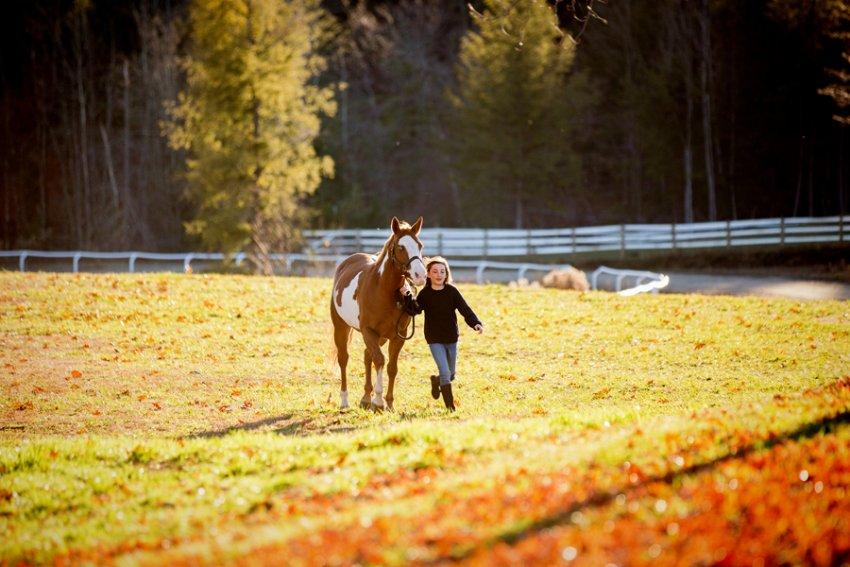 Equine-photographer-saratoga-ny36.jpg