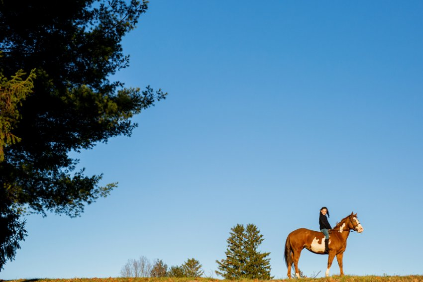 Equine-photographer-saratoga-ny40.jpg