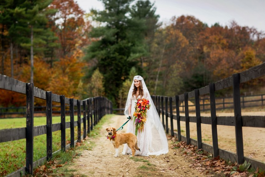 Tracey-Buyce-Photography-wedding-photos71.jpg
