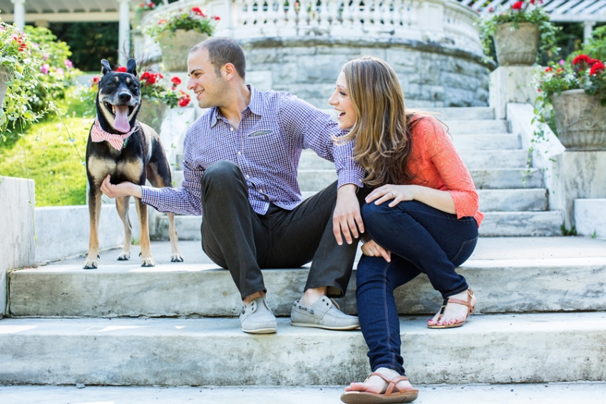 tracey-buyce-saratoga-ny-engagement-photos-dog-horse077.jpg