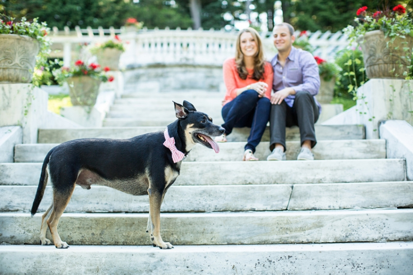tracey-buyce-saratoga-ny-engagement-photos-dog-horse083.jpg