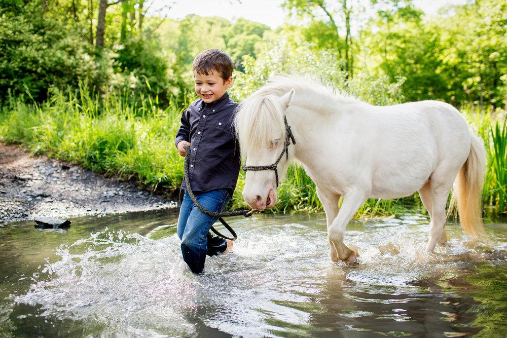 horse photography saratoga ny15.jpg