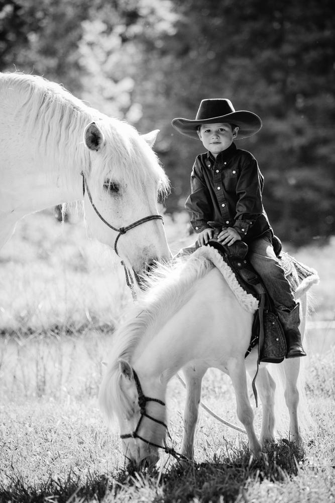 horse photography saratoga ny21.jpg
