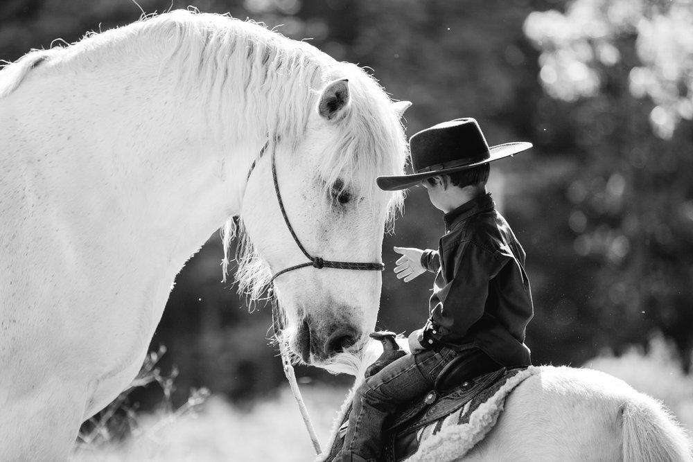 horse photography saratoga ny22.jpg