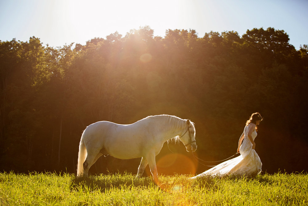 Tracey Buyce wedding photography with horse37.jpg