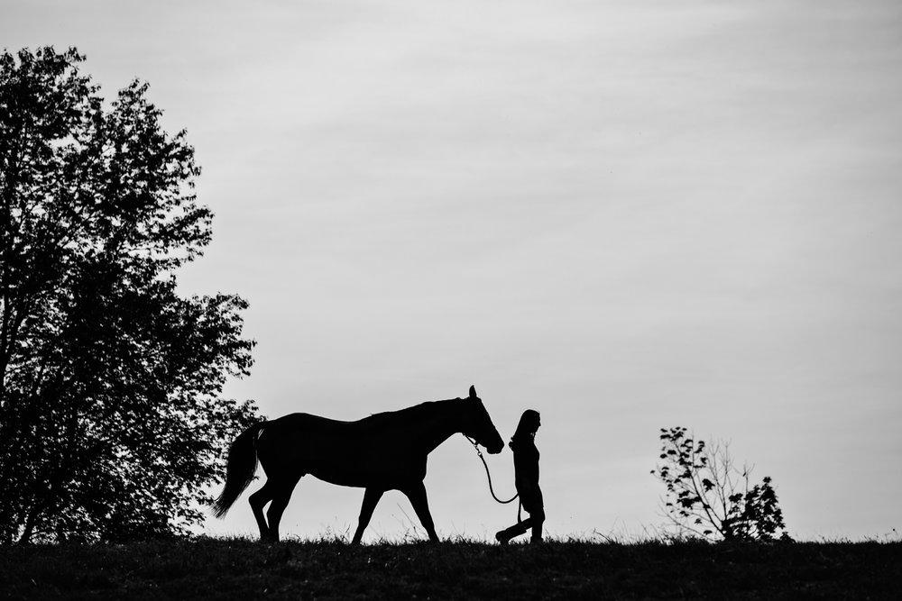 Equestrian Photography Saratoga Springs NY20.jpg