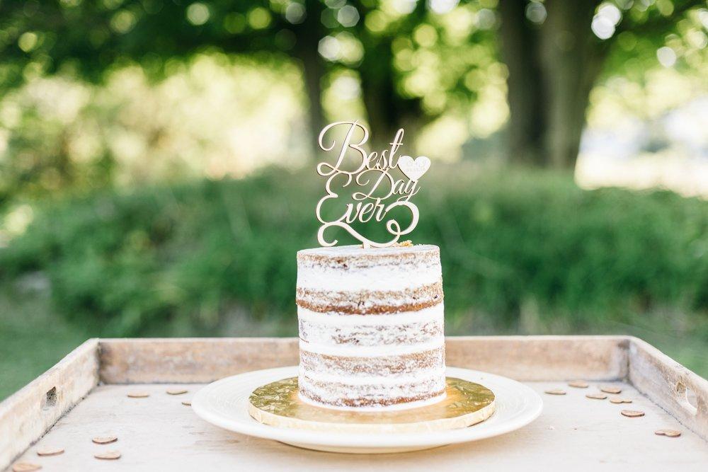wedding-scarlett-joe-460.jpg