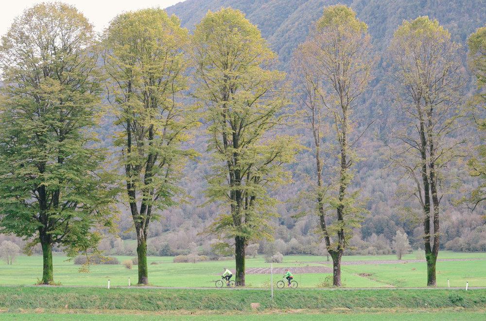 hisa-franko-slovenia-lifeonpine_DSC_0939.jpg