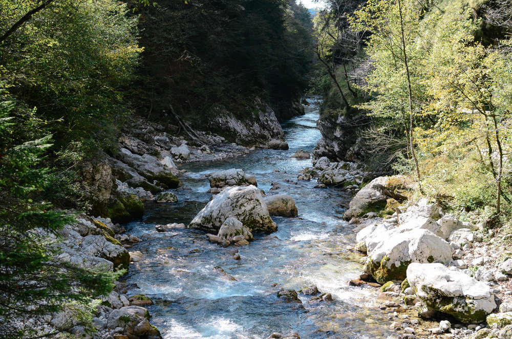 day-trips-western-slovenia-lifeonpine_DSC_0265.jpg
