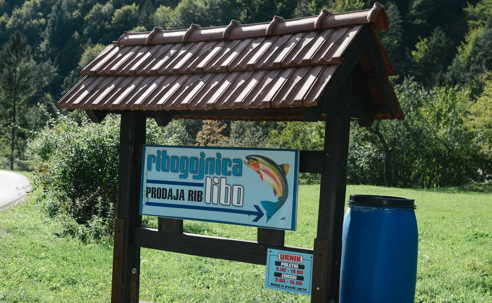 day-trips-western-slovenia-lifeonpine_DSC_0328.jpg